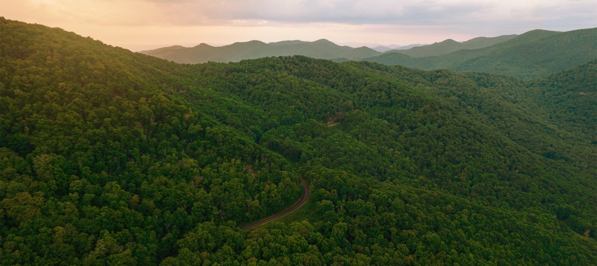 Overhead view of a lush green mountainous area with a single road snaking through the trees